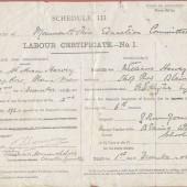 School Labour Certificate