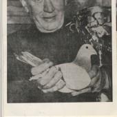 Mog Cox