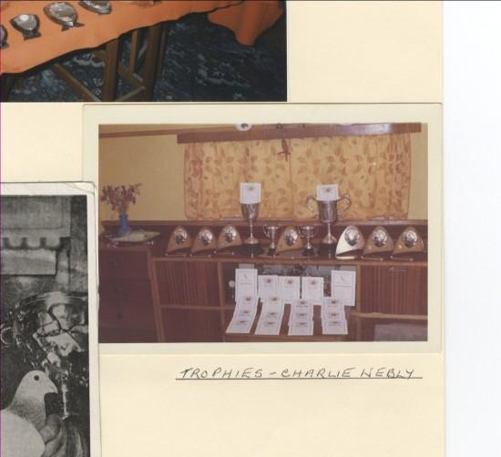 Trophies of Charlie Webly