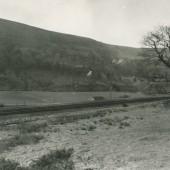 The Betterment Field, 1970s
