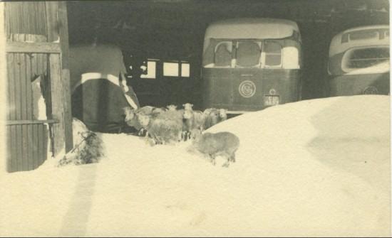 Griffin's Garage, 1947