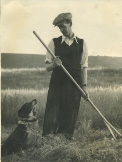 William Mills making hay in World War II