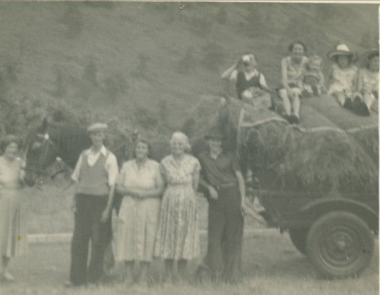 Mills family haymaking, 1953