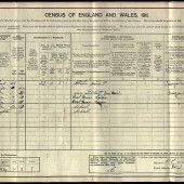 David John Bradley, 1911 census.