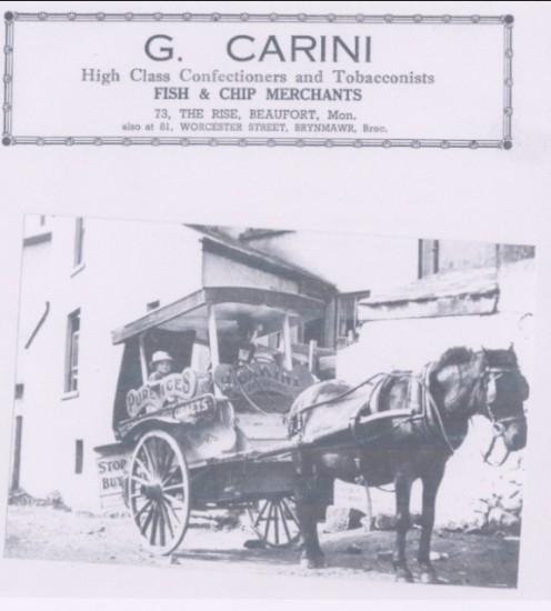 Carini's Ice Cream float