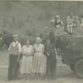 Mills family haymaking, 1953