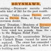 Brecon Radnor Express Carmarthen and Swansea Valley Gazette and Brynmawr District Advertiser 12th November 1914