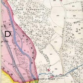 Tredegar Iron & Coal Company Map Page D 10